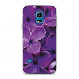 Силиконовый чехол Сирень крупная на Samsung Galaxy S5 mini